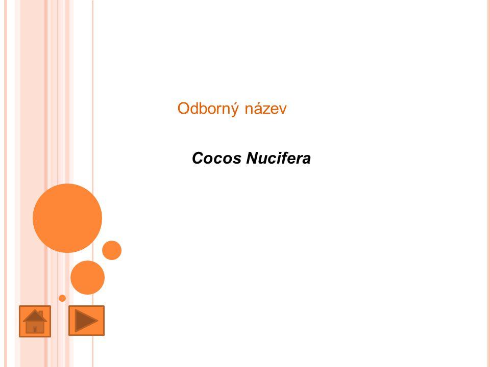 Odborný název Cocos Nucifera