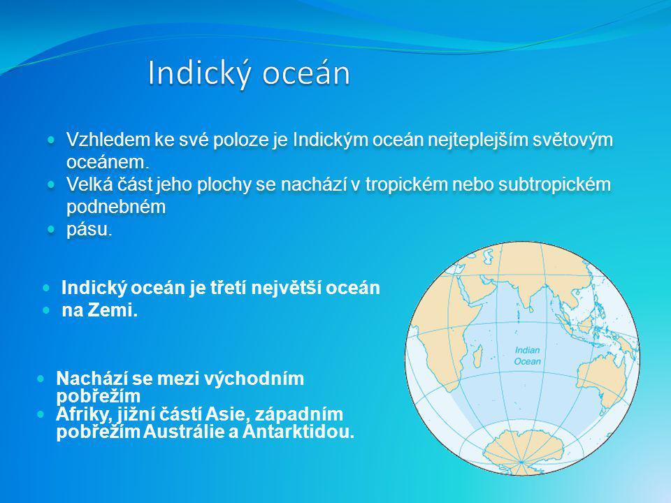 Severní Amerika Jižní Amerika Antarktida Afrika Evropa Arktida Tichý oceán Atlantský oceán Asie