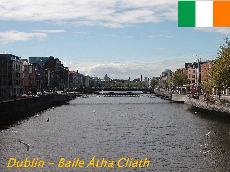 Na většině irských silničních značek je irský i anglický nápis