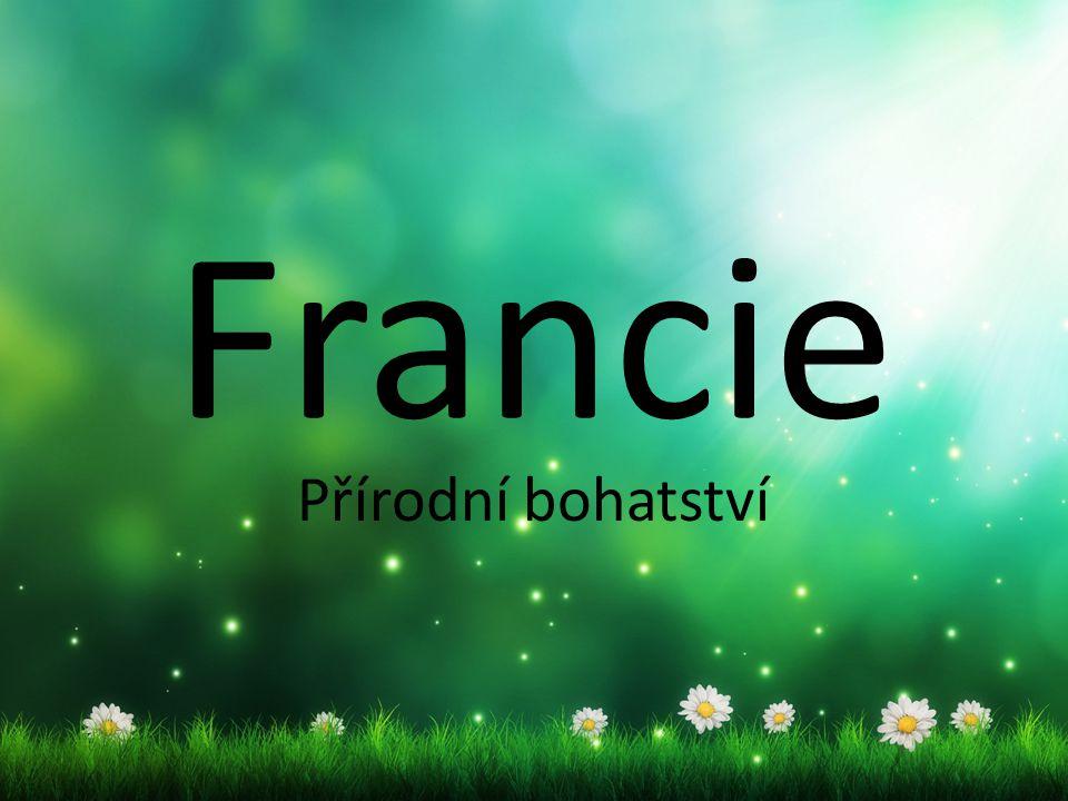 Francie oplývá přírodními památkami, různorodost míst je výjimečná (parky, zahrady, lesy, cestovní ruch) Francie má vyspělé průmyslové hospodářství a silné zemědělství.