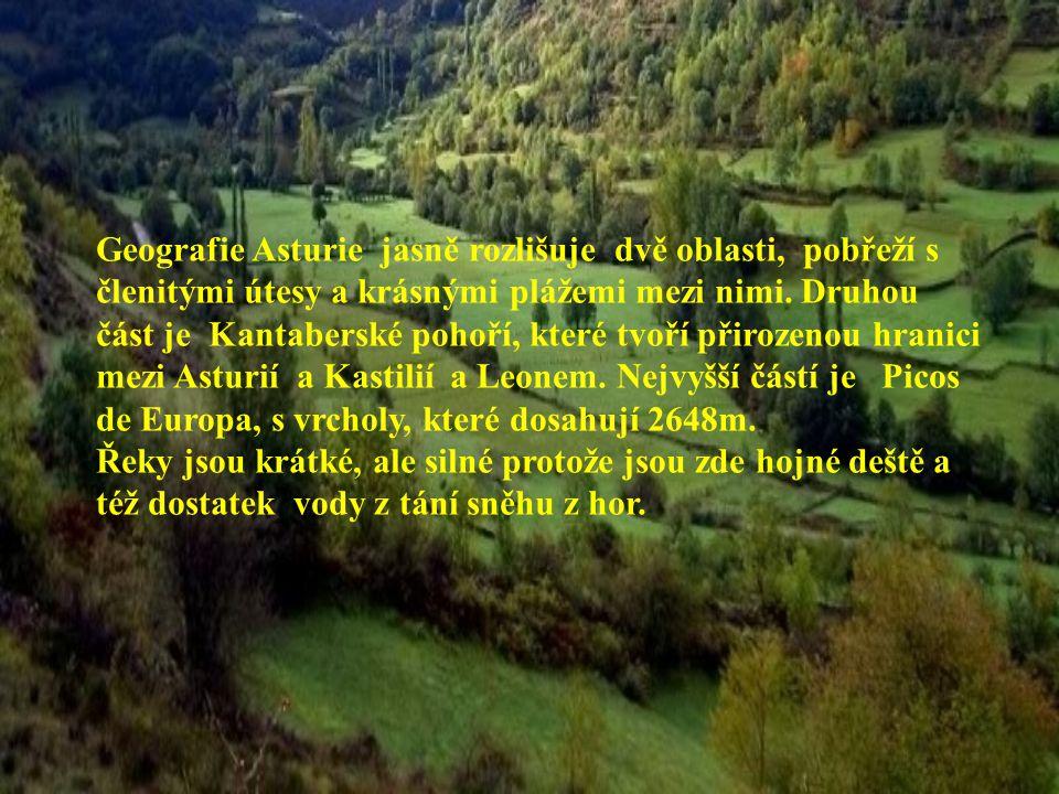 Toto malé, staré království se nachází na severu Pyrenejského poloostrova mezi řekami Deva a Eo a zaujímá plochu 10,564 čtverečních kilometrů.
