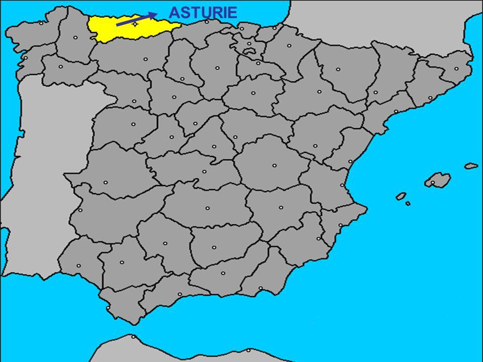 Asturie je stále zelená.Mnoho odstínů této barvy se zcela pokrývá hory, údolí a lesy.
