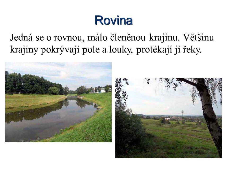 Rovina Jedná se o rovnou, málo členěnou krajinu. Většinu krajiny pokrývají pole a louky, protékají jí řeky.