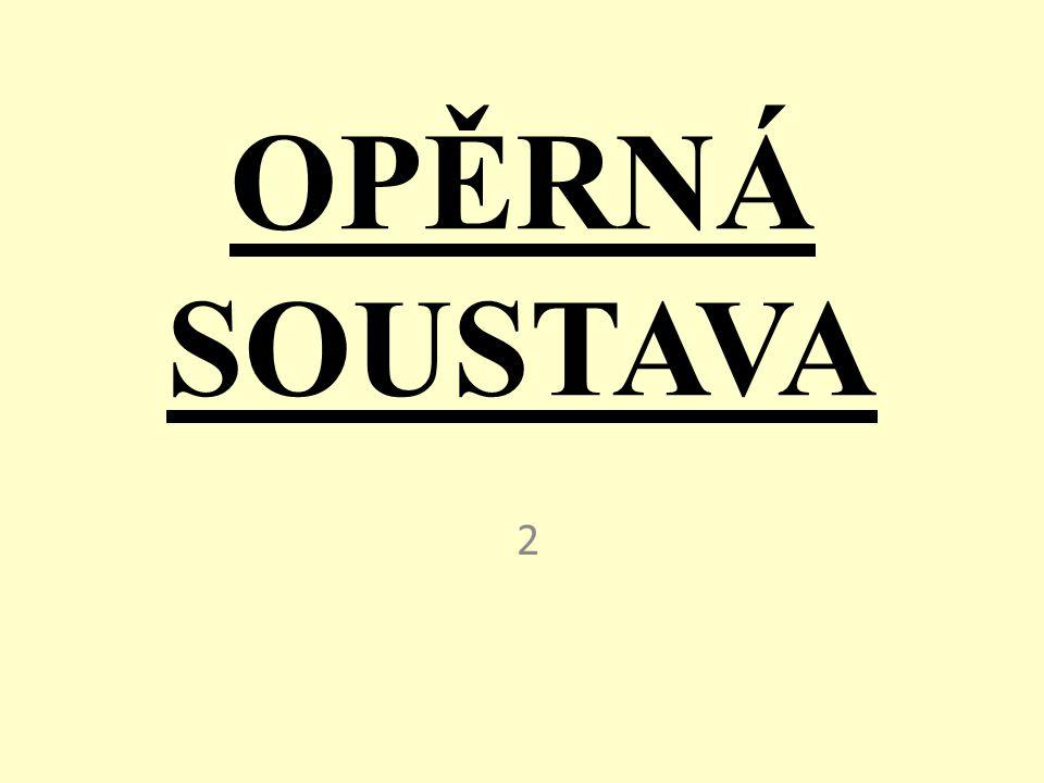 OPĚRNÁ SOUSTAVA 2