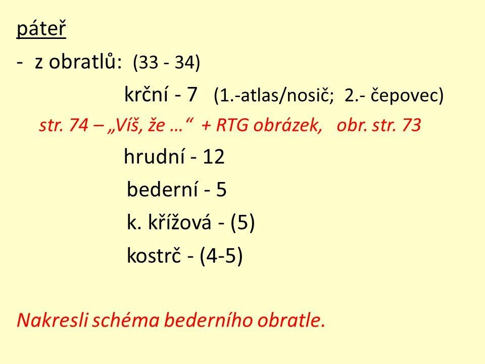 """páteř -z obratlů: (33 - 34) krční - 7 (1.-atlas/nosič; 2.- čepovec) str. 74 – """"Víš, že …"""" + RTG obrázek, obr. str. 73 hrudní - 12 bederní - 5 k. křížo"""
