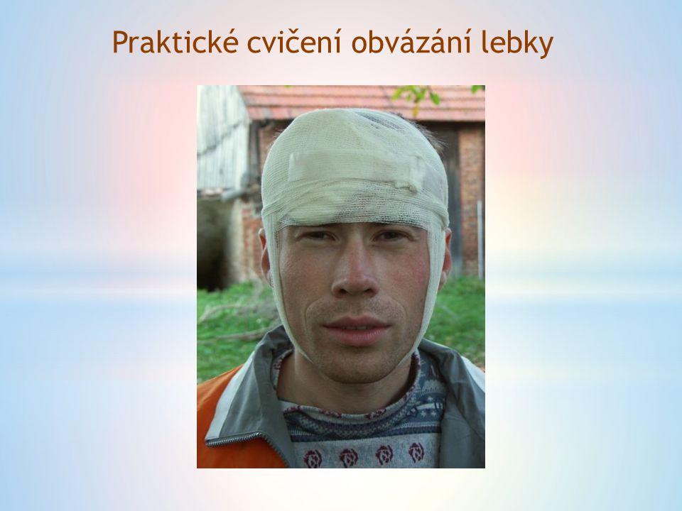 POUŽITÉ ZDROJE http://skolajecna.cz/biologie/Sources/Photogallery_Detail.php?intSourc e=1&intImageId=23 http://www.mudrhosekjosef.cz/clanky/prakticke-info/odkazy/ http://www.gpf.cz/realitni-kancelar-hornik http://omalovanky.unas.cz/omalov%C3%A1nky/Sport/Zimn%C3%AD%20spo rty/slides/omalovanka-hokejista.html http://www.horydoly.cz/foto/prvni_pomoc_vyuka/ipage00016.htm