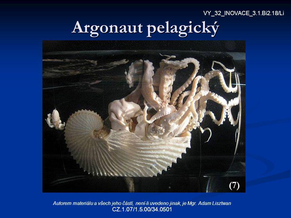 Argonaut pelagický (7) VY_32_INOVACE_3.1.Bi2.18/Li Autorem materiálu a všech jeho částí, není-li uvedeno jinak, je Mgr. Adam Lisztwan CZ.1.07/1.5.00/3