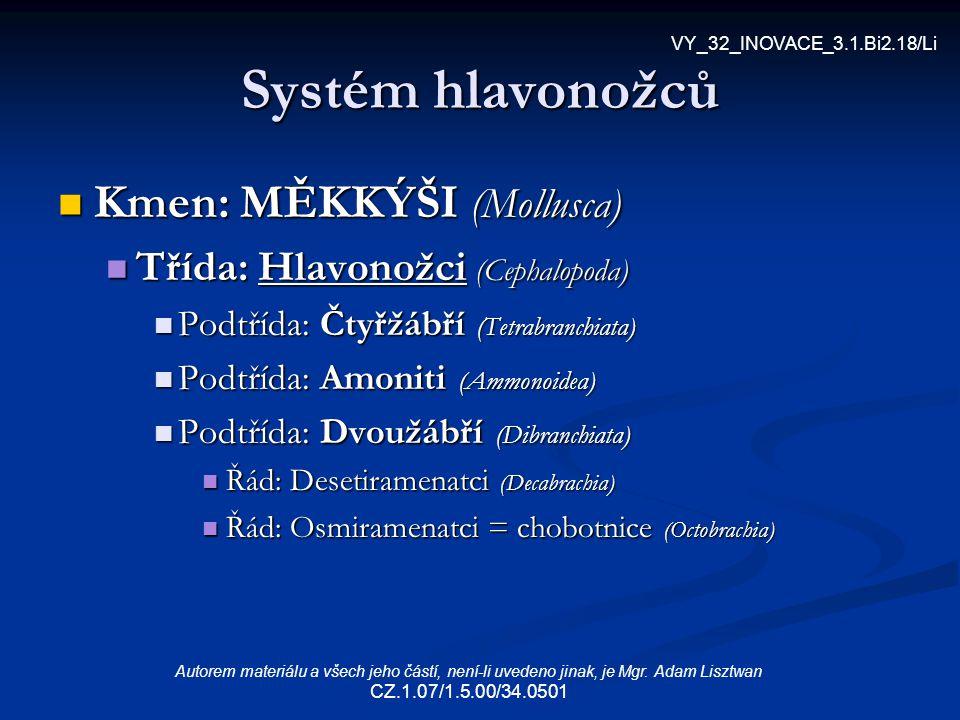 Systém hlavonožců Kmen: MĚKKÝŠI (Mollusca) Kmen: MĚKKÝŠI (Mollusca) Třída: Hlavonožci (Cephalopoda) Třída: Hlavonožci (Cephalopoda) Podtřída: Čtyřžábř