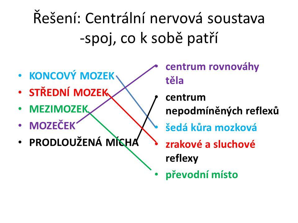 Řešení: Centrální nervová soustava -spoj, co k sobě patří KONCOVÝ MOZEK STŘEDNÍ MOZEK MEZIMOZEK MOZEČEK PRODLOUŽENÁ MÍCHA centrum rovnováhy těla centr
