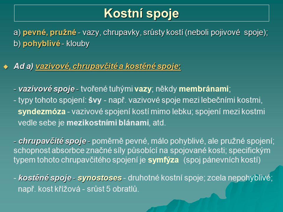 Kostní spoje a) pevné, pružné - vazy, chrupavky, srůsty kostí (neboli pojivové spoje); b) pohyblivé - klouby  Ad a) vazivové, chrupavčité a kostěné s