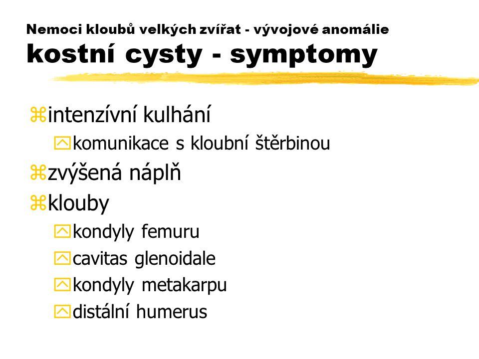 Nemoci kloubů velkých zvířat - vývojové anomálie kostní cysty - symptomy zintenzívní kulhání ykomunikace s kloubní štěrbinou zzvýšená náplň zklouby ykondyly femuru ycavitas glenoidale ykondyly metakarpu ydistální humerus