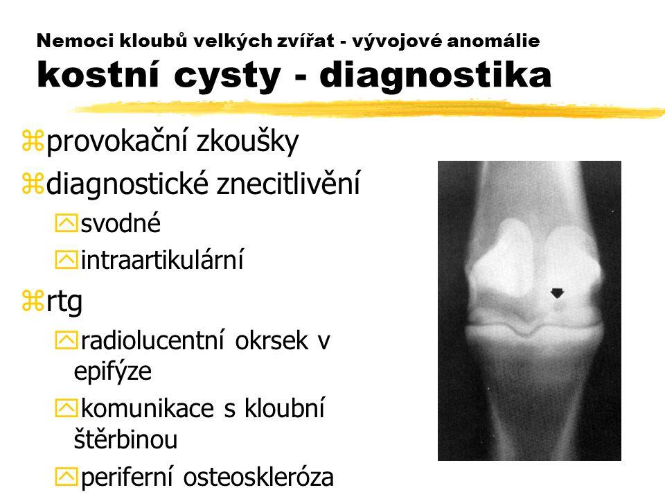 Nemoci kloubů velkých zvířat - vývojové anomálie kostní cysty - diagnostika zprovokační zkoušky zdiagnostické znecitlivění ysvodné yintraartikulární zrtg yradiolucentní okrsek v epifýze ykomunikace s kloubní štěrbinou yperiferní osteoskleróza