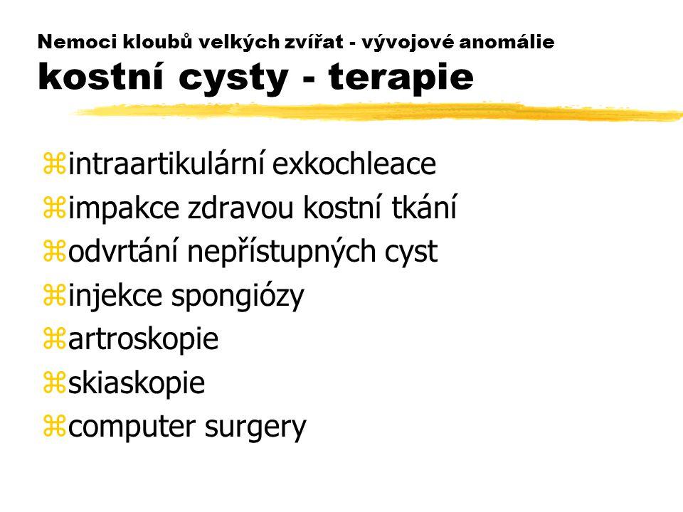 Nemoci kloubů velkých zvířat - vývojové anomálie kostní cysty - terapie zintraartikulární exkochleace zimpakce zdravou kostní tkání zodvrtání nepřístu