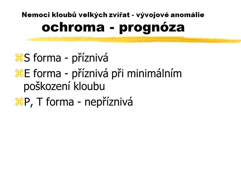 Nemoci kloubů velkých zvířat - vývojové anomálie ochroma - prognóza zS forma - příznivá zE forma - příznivá při minimálním poškození kloubu zP, T forma - nepříznivá