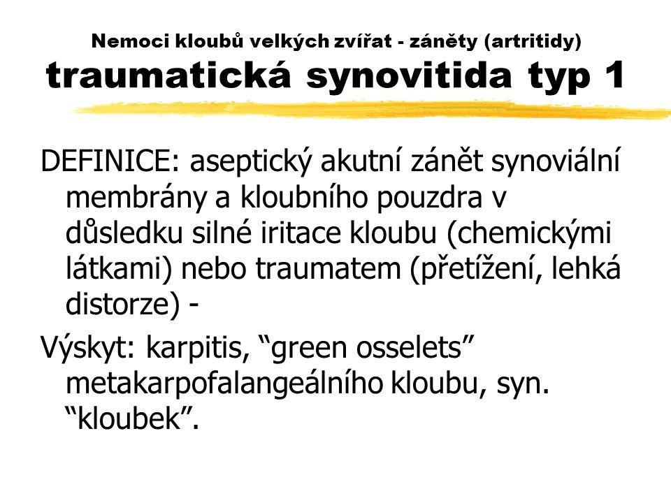 Nemoci kloubů velkých zvířat - záněty (artritidy) traumatická synovitida typ 1 DEFINICE: aseptický akutní zánět synoviální membrány a kloubního pouzdra v důsledku silné iritace kloubu (chemickými látkami) nebo traumatem (přetížení, lehká distorze) - Výskyt: karpitis, green osselets metakarpofalangeálního kloubu, syn.