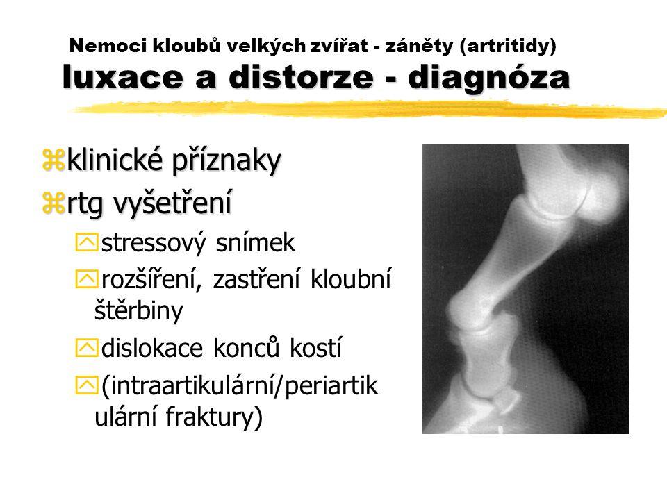 luxace a distorze - diagnóza Nemoci kloubů velkých zvířat - záněty (artritidy) luxace a distorze - diagnóza zklinické příznaky zrtg vyšetření ystressový snímek yrozšíření, zastření kloubní štěrbiny ydislokace konců kostí y(intraartikulární/periartik ulární fraktury)