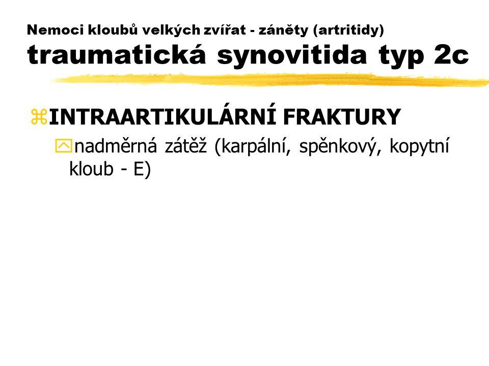 Nemoci kloubů velkých zvířat - záněty (artritidy) traumatická synovitida typ 2c zINTRAARTIKULÁRNÍ FRAKTURY ynadměrná zátěž (karpální, spěnkový, kopytn