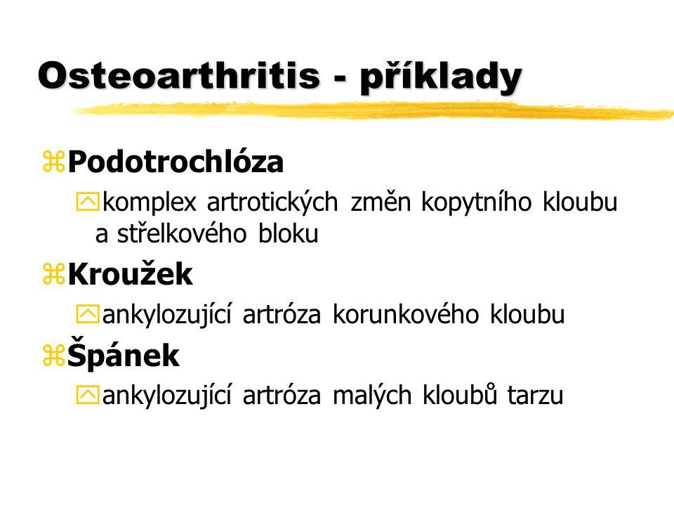 Osteoarthritis - příklady zPodotrochlóza ykomplex artrotických změn kopytního kloubu a střelkového bloku zKroužek yankylozující artróza korunkového kloubu zŠpánek yankylozující artróza malých kloubů tarzu