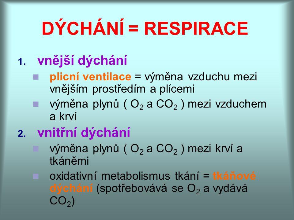 DÝCHÁNÍ = RESPIRACE 1. vnější dýchání plicní ventilace = výměna vzduchu mezi vnějším prostředím a plícemi výměna plynů ( O 2 a CO 2 ) mezi vzduchem a