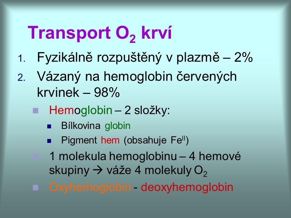 Transport O 2 krví 1. Fyzikálně rozpuštěný v plazmě – 2% 2. Vázaný na hemoglobin červených krvinek – 98% Hemoglobin – 2 složky: Bílkovina globin Pigme
