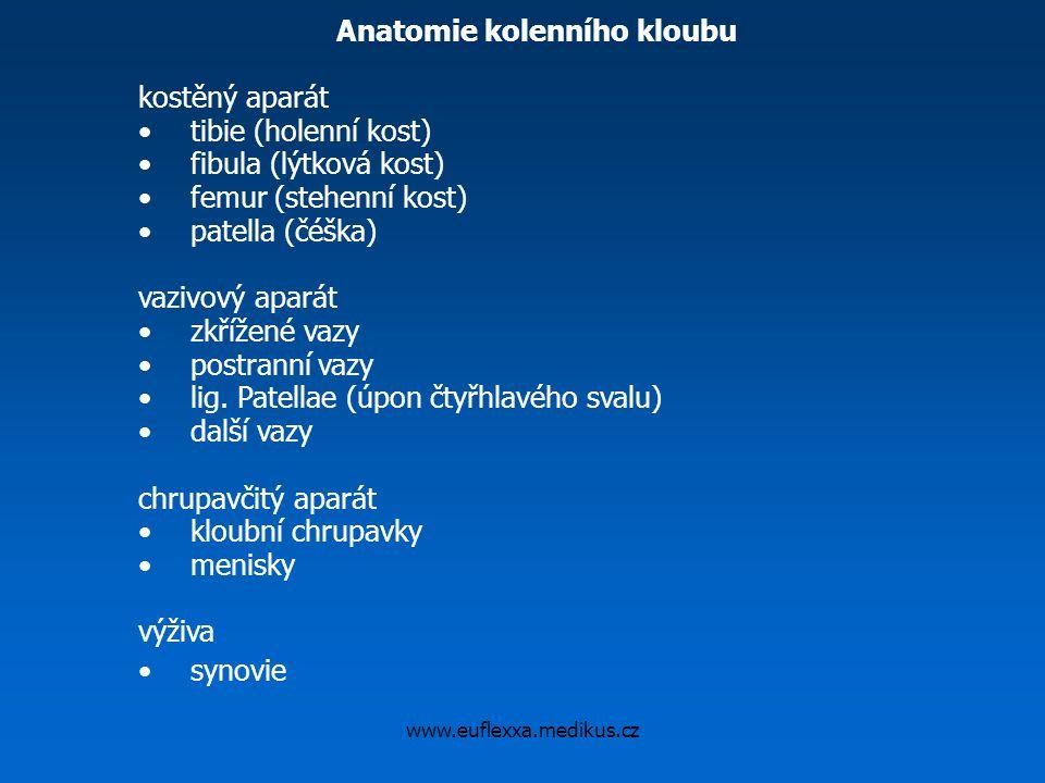 www.euflexxa.medikus.cz Anatomie kolenního kloubu kostěný aparát tibie (holenní kost) fibula (lýtková kost) femur (stehenní kost) patella (čéška) vazi
