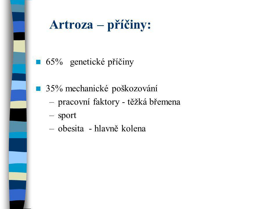 Artroza – příčiny: 65% genetické příčiny 35% mechanické poškozování –pracovní faktory - těžká břemena –sport –obesita - hlavně kolena