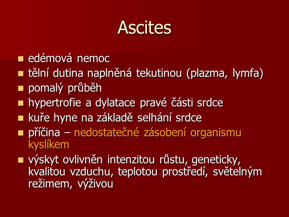 Ascites edémová nemoc edémová nemoc tělní dutina naplněná tekutinou (plazma, lymfa) tělní dutina naplněná tekutinou (plazma, lymfa) pomalý průběh poma