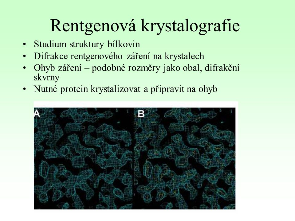 Rentgenová krystalografie Studium struktury bílkovin Difrakce rentgenového záření na krystalech Ohyb záření – podobné rozměry jako obal, difrakční skv