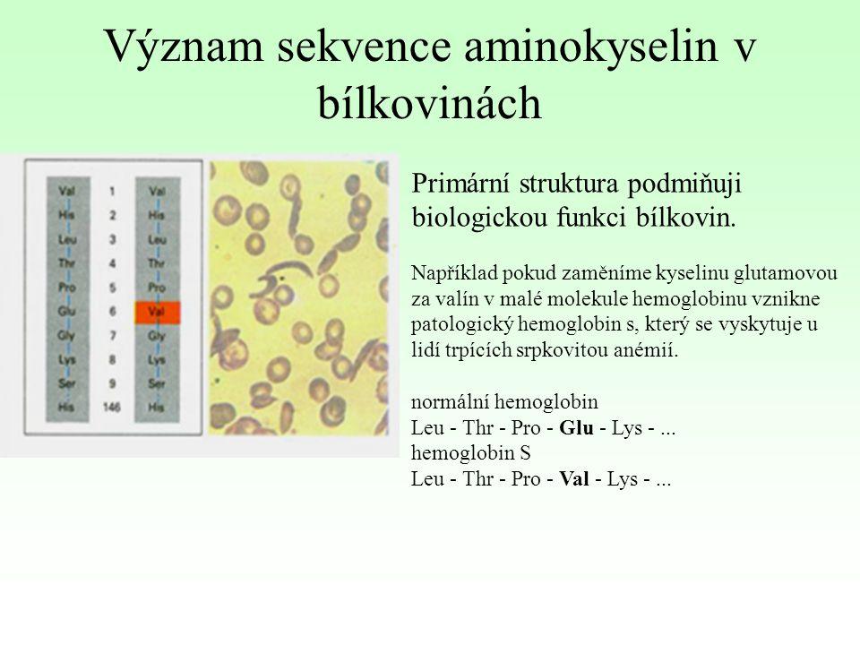 Význam sekvence aminokyselin v bílkovinách Primární struktura podmiňuji biologickou funkci bílkovin. Například pokud zaměníme kyselinu glutamovou za v