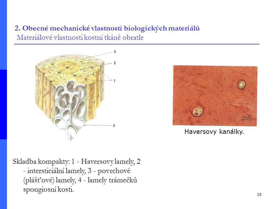 15 Skladba kompakty: 1 - Haversovy lamely, 2 - intersticiální lamely, 3 - povrchové (plášťové) lamely, 4 - lamely trámečků spongiosní kosti.