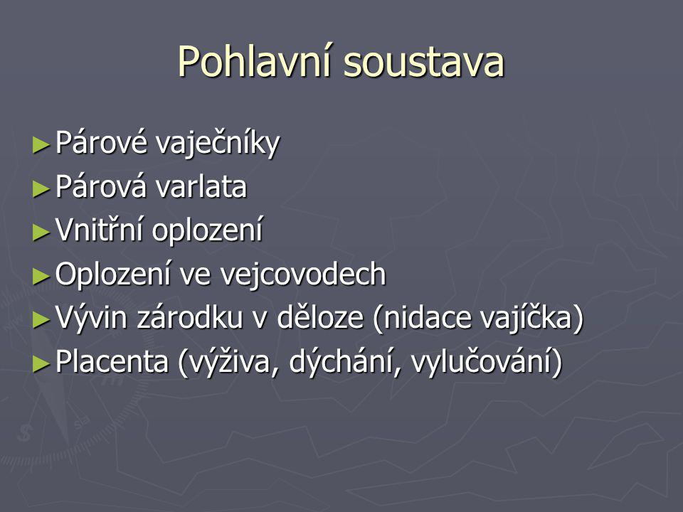 Pohlavní soustava ► Párové vaječníky ► Párová varlata ► Vnitřní oplození ► Oplození ve vejcovodech ► Vývin zárodku v děloze (nidace vajíčka) ► Placenta (výživa, dýchání, vylučování)