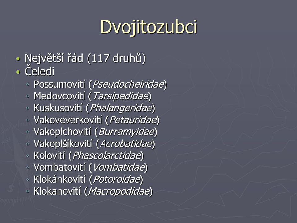 Dvojitozubci Největší řád (117 druhů) Největší řád (117 druhů) Čeledi Čeledi ◦ Possumovití (Pseudocheiridae) ◦ Medovcovití (Tarsipedidae) ◦ Kuskusovití (Phalangeridae) ◦ Vakoveverkovití (Petauridae) ◦ Vakoplchovití (Burramyidae) ◦ Vakoplšíkovití (Acrobatidae) ◦ Kolovití (Phascolarctidae) ◦ Vombatovití (Vombatidae) ◦ Klokánkovití (Potoroidae) ◦ Klokanovití (Macropodidae)