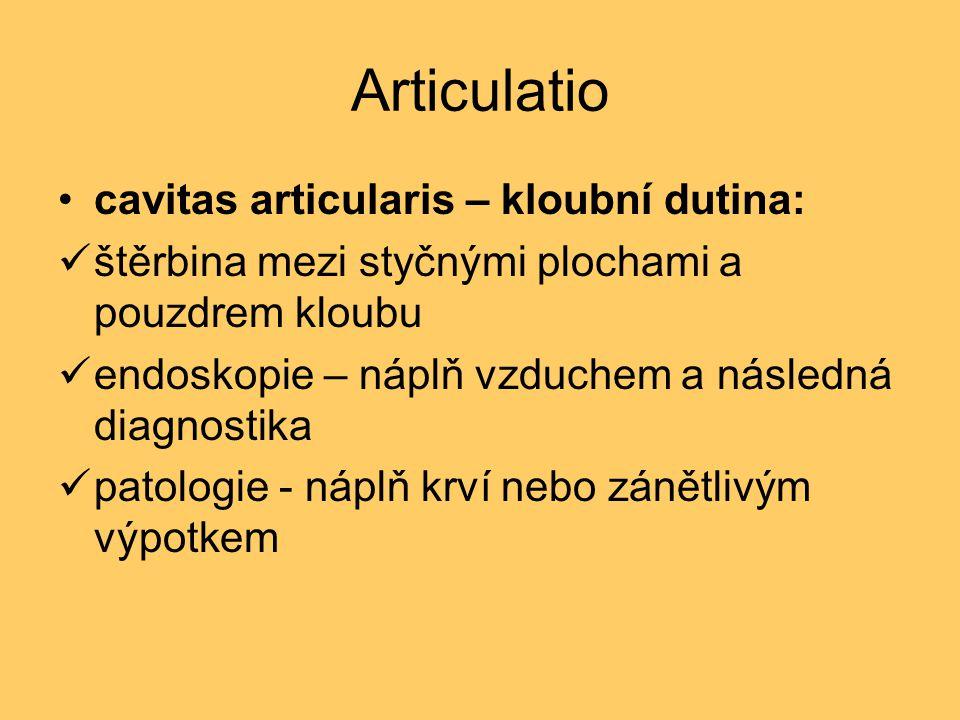 Articulatio synovie – kloubní maz: vazká, čirá tekutina tvorba z krevní plazmy ochranné zařízení kloubu - zvyšuje skluznost styčných ploch - význam pro výživu chrupavek