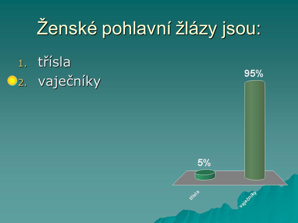 Lidské tělo – Prvouka-3.ročník Použitý software: držitel licence - ZŠ J.