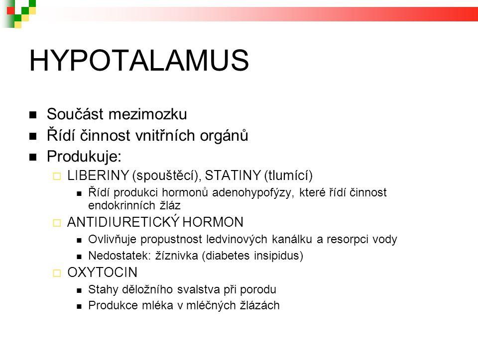 HYPOTALAMUS Součást mezimozku Řídí činnost vnitřních orgánů Produkuje:  LIBERINY (spouštěcí), STATINY (tlumící) Řídí produkci hormonů adenohypofýzy, které řídí činnost endokrinních žláz  ANTIDIURETICKÝ HORMON Ovlivňuje propustnost ledvinových kanálku a resorpci vody Nedostatek: žíznivka (diabetes insipidus)  OXYTOCIN Stahy děložního svalstva při porodu Produkce mléka v mléčných žlázách