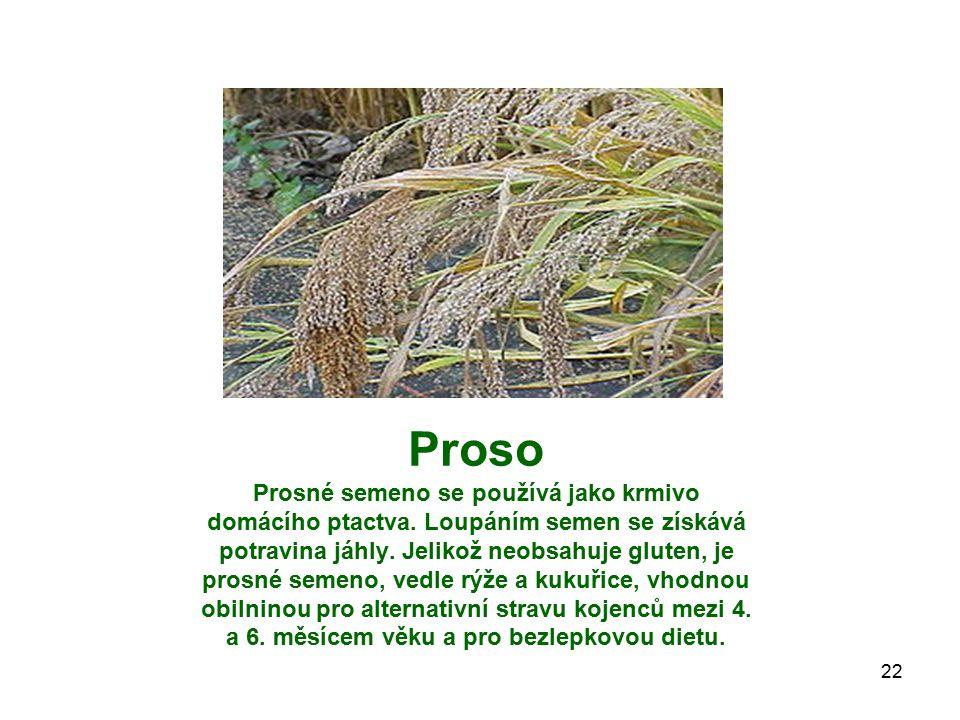 Proso Prosné semeno se používá jako krmivo domácího ptactva. Loupáním semen se získává potravina jáhly. Jelikož neobsahuje gluten, je prosné semeno, v