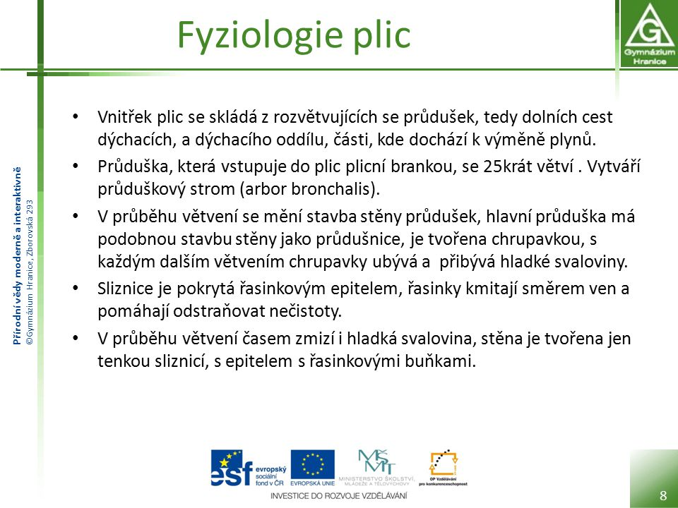 Přírodní vědy moderně a interaktivně ©Gymnázium Hranice, Zborovská 293 Fyziologie plic Vnitřek plic se skládá z rozvětvujících se průdušek, tedy dolní