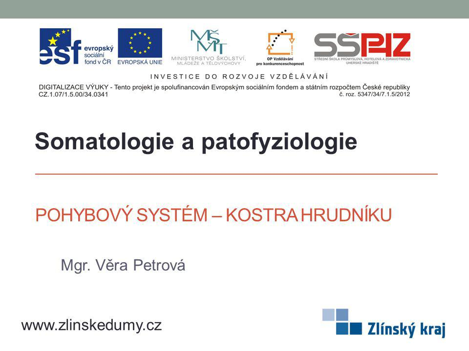 POHYBOVÝ SYSTÉM – KOSTRA HRUDNÍKU Mgr. Věra Petrová www.zlinskedumy.cz Somatologie a patofyziologie