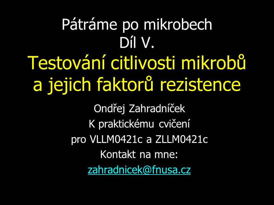 Polyenová antimykotika: amfotericin B Amfotericin B je účinné, ale velmi toxické (nefrotoxické) antimykotikum.