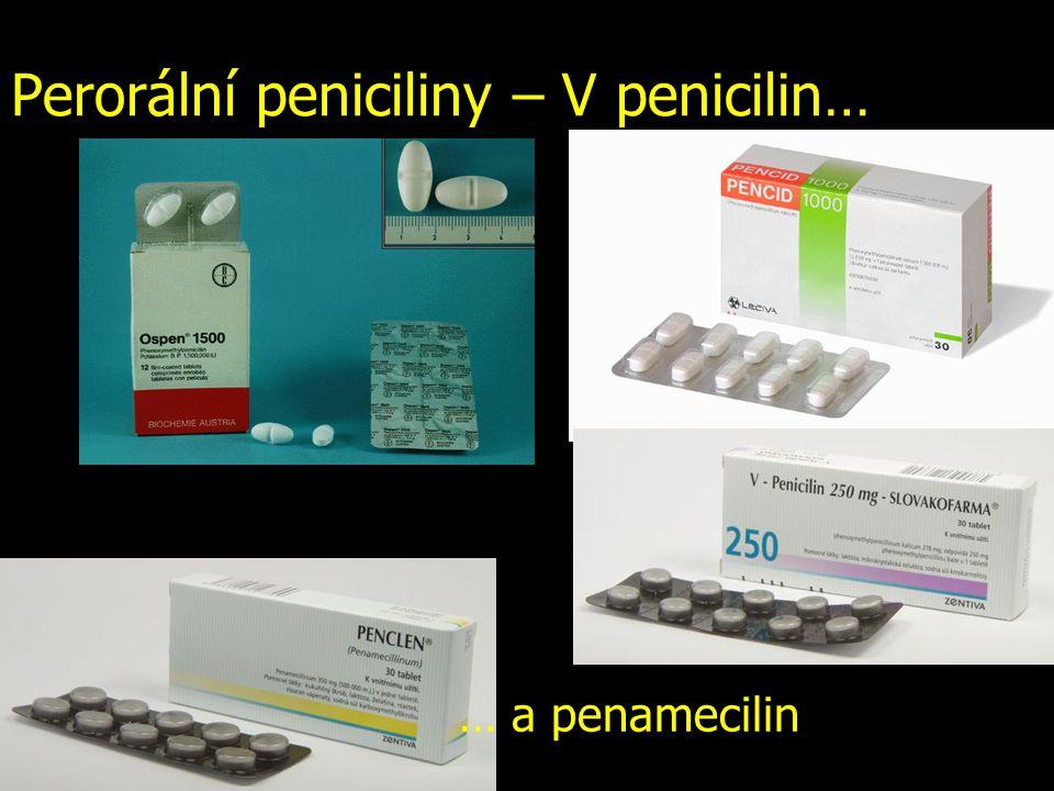 Perorální peniciliny – V penicilin… … a penamecilin