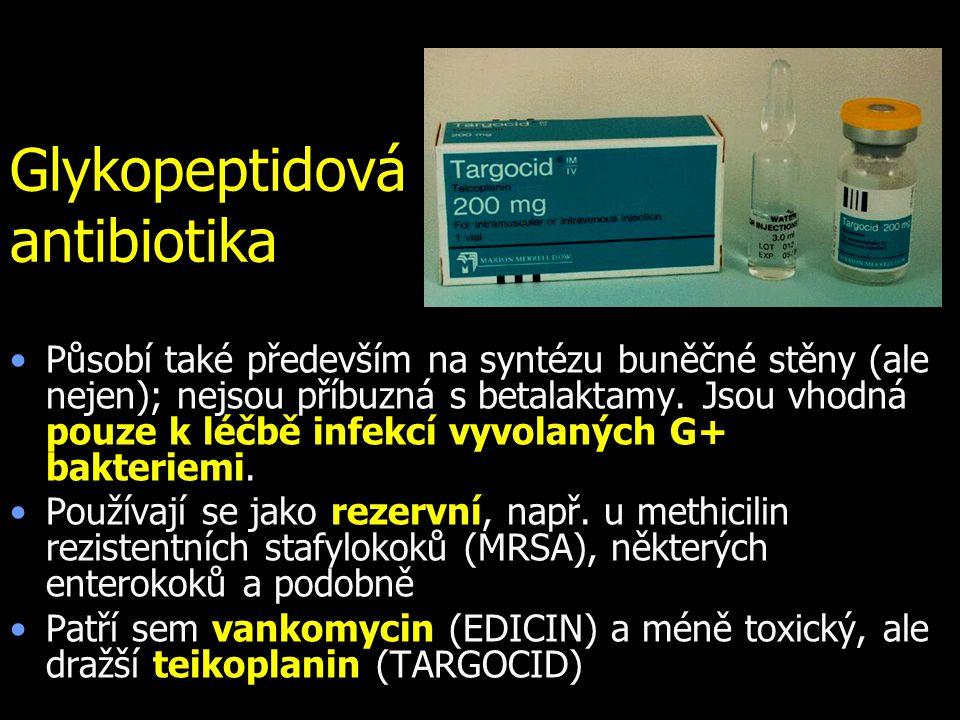 Glykopeptidová antibiotika Působí také především na syntézu buněčné stěny (ale nejen); nejsou příbuzná s betalaktamy. Jsou vhodná pouze k léčbě infekc