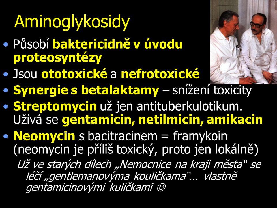 Aminoglykosidy Působí baktericidně v úvodu proteosyntézy Jsou ototoxické a nefrotoxické Synergie s betalaktamy – snížení toxicity Streptomycin už jen