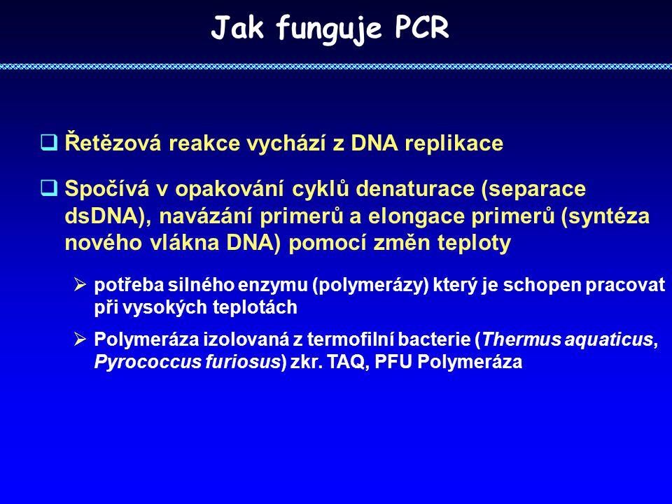  Řetězová reakce vychází z DNA replikace  Spočívá v opakování cyklů denaturace (separace dsDNA), navázání primerů a elongace primerů (syntéza nového vlákna DNA) pomocí změn teploty  potřeba silného enzymu (polymerázy) který je schopen pracovat při vysokých teplotách  Polymeráza izolovaná z termofilní bacterie (Thermus aquaticus, Pyrococcus furiosus) zkr.