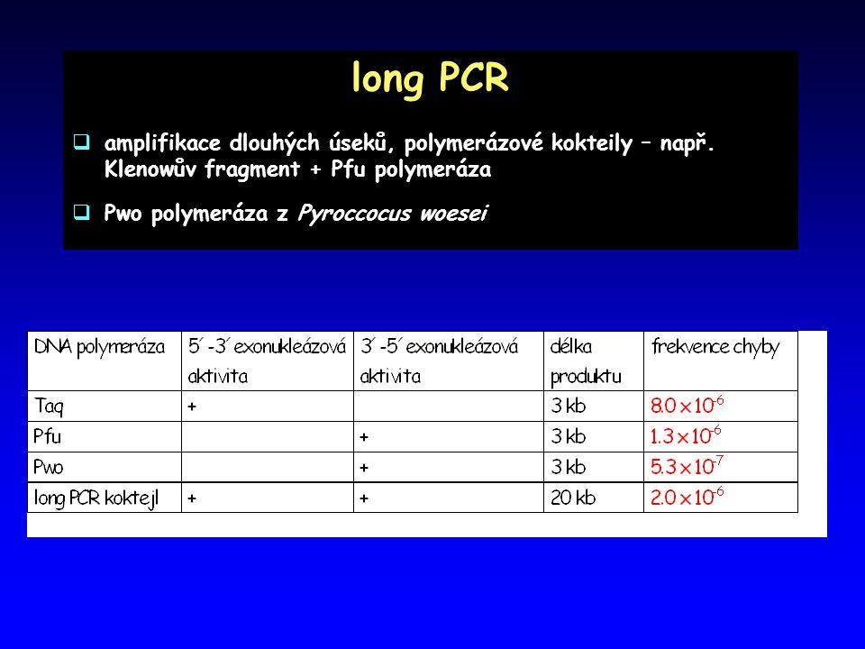 long PCR  amplifikace dlouhých úseků, polymerázové kokteily – např. Klenowův fragment + Pfu polymeráza  Pwo polymeráza z Pyroccocus woesei