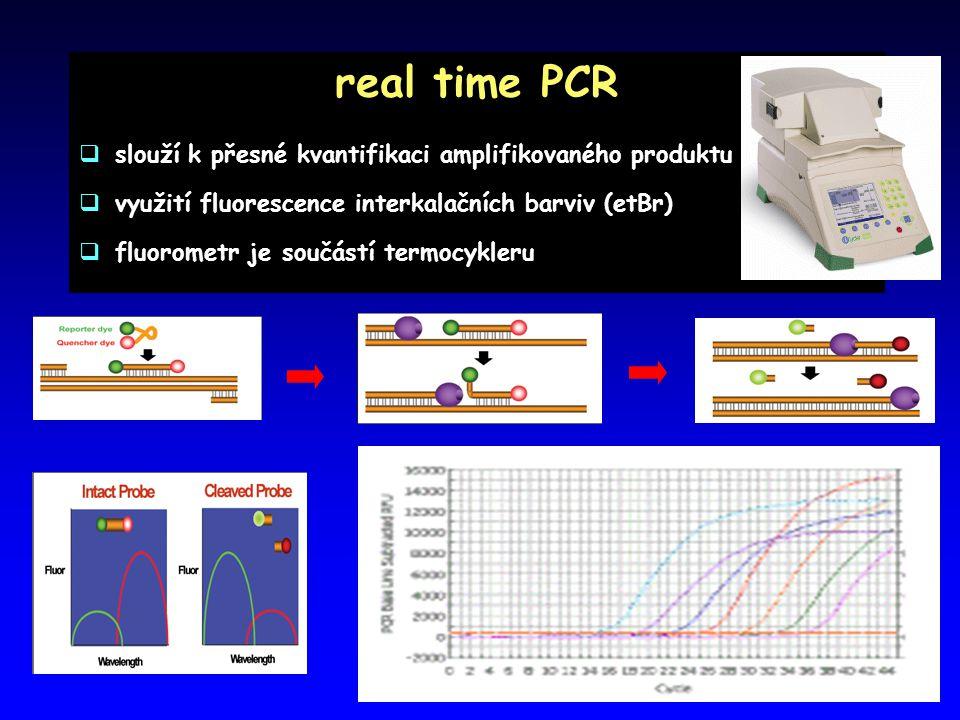 real time PCR  slouží k přesné kvantifikaci amplifikovaného produktu  využití fluorescence interkalačních barviv (etBr)  fluorometr je součástí termocykleru