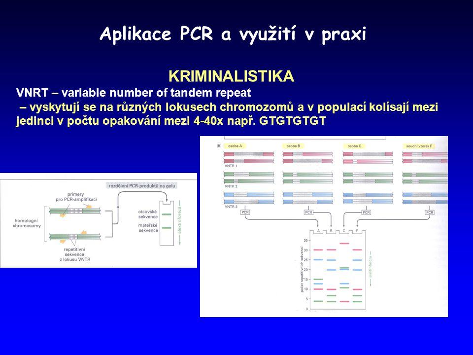 Aplikace PCR a využití v praxi KRIMINALISTIKA VNRT – variable number of tandem repeat – vyskytují se na různých lokusech chromozomů a v populací kolís