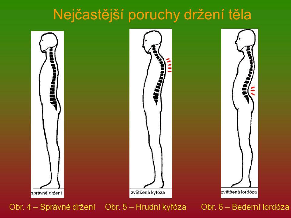 Nejčastější poruchy držení těla Obr. 4 – Správné drženíObr. 5 – Hrudní kyfózaObr. 6 – Bederní lordóza