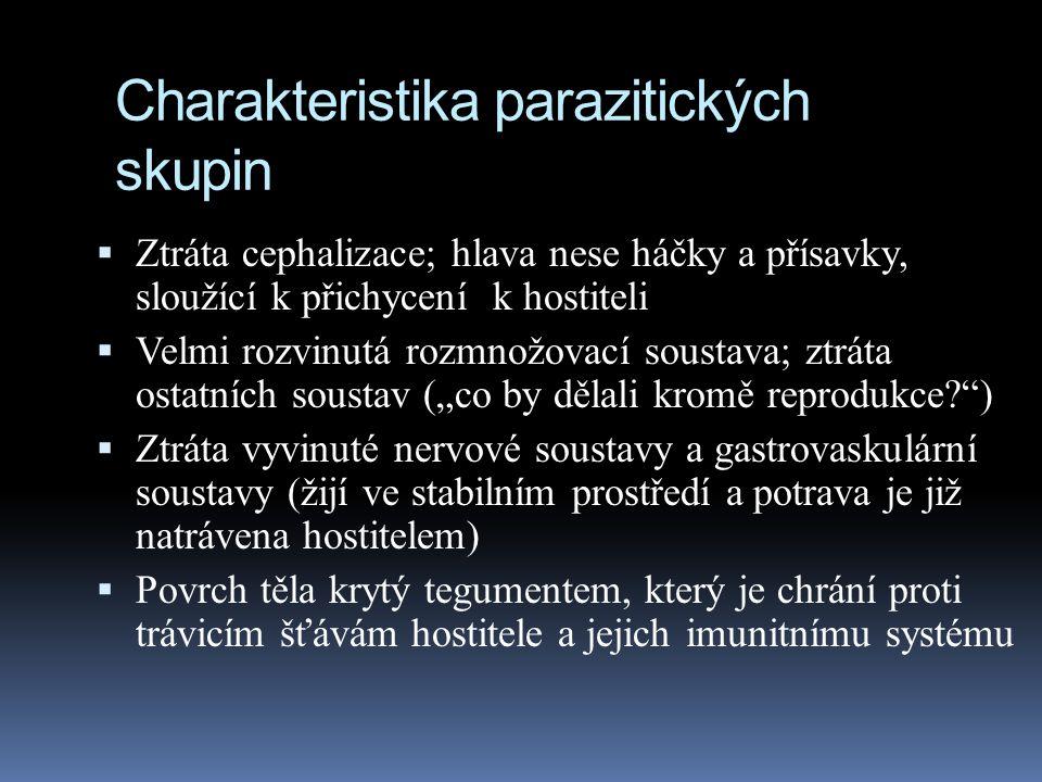 """Charakteristika parazitických skupin  Ztráta cephalizace; hlava nese háčky a přísavky, sloužící k přichycení k hostiteli  Velmi rozvinutá rozmnožovací soustava; ztráta ostatních soustav (""""co by dělali kromě reprodukce? )  Ztráta vyvinuté nervové soustavy a gastrovaskulární soustavy (žijí ve stabilním prostředí a potrava je již natrávena hostitelem)  Povrch těla krytý tegumentem, který je chrání proti trávicím šťávám hostitele a jejich imunitnímu systému"""