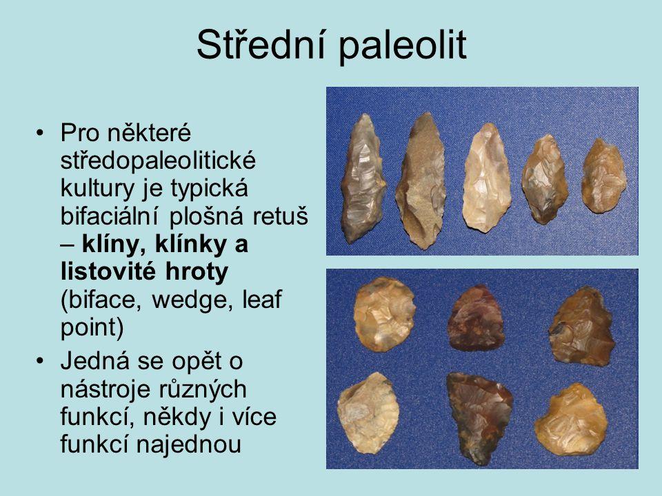 Střední paleolit Pro některé středopaleolitické kultury je typická bifaciální plošná retuš – klíny, klínky a listovité hroty (biface, wedge, leaf poin