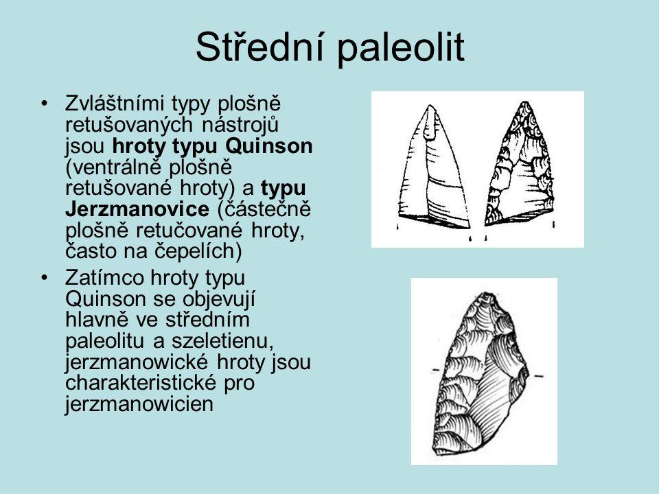 Střední paleolit Zvláštními typy plošně retušovaných nástrojů jsou hroty typu Quinson (ventrálně plošně retušované hroty) a typu Jerzmanovice (částečn